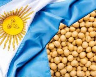 Argentina Dá grande salto na colheita de soja em uma semana