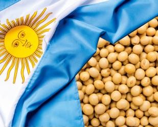 Milho e soja em alerta com crise na Argentina