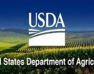 Relatório de Oferta e Demanda do USDA (Janeiro/21)