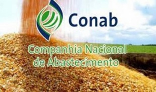 Dados da CONAB
