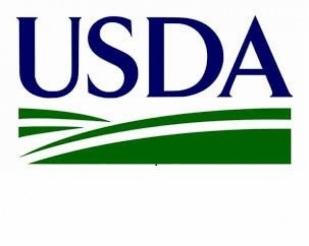 USDA Realiza Cortes na Produtividade da soja Americana