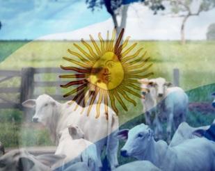 Argentina suspende exportaçãode carne bovinapor 30dias