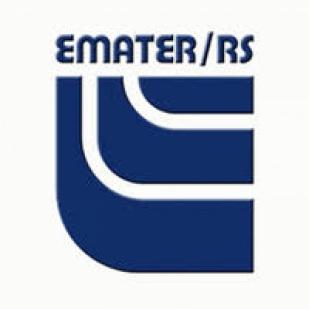 RELATÓRIO DE SAFRAS - EMATER/RS-ASCAR
