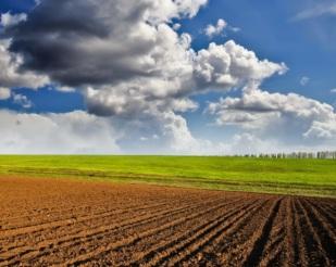 Condições Climáticas nos EUA - Influenciam cotações